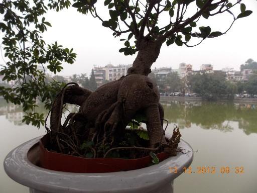 Вьетнам 2012 055