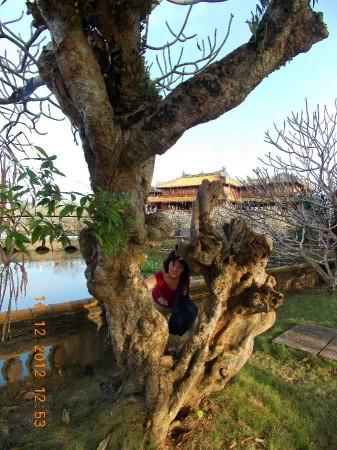 Вьетнам 2012 194