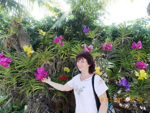 Вьетнам 2012 226