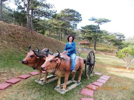 Вьетнам 2012 360